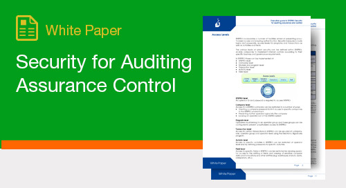 Security for Auditing Assurance Control
