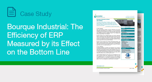 Bourque Industrial: The Efficiency of ERP Measured by Effect on the Bottom Line