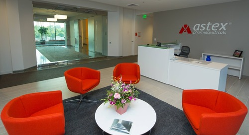 New offices combine modern amenities and warmth