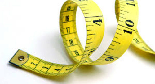 Measuring Performance Versus Potential in Employees