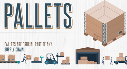 Pallets infographic collection: Effective solution for storage