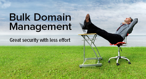 Managing Security and Caching for Multiple Domains? Distil Bulk Domain Manager to the Rescue!