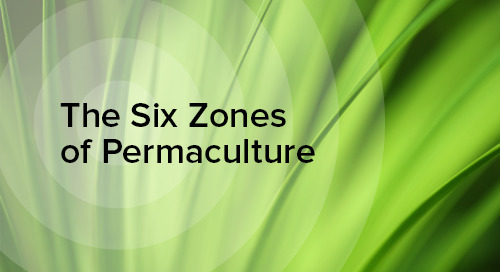 Permaculture Zones and IT Security
