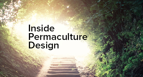 Permaculture in IT Security : Practical Applications