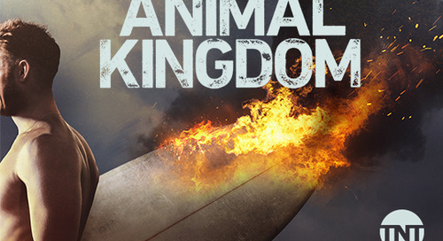 TNT: Animal Kingdom [Returning Series]