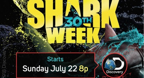 Discovery: Shark Week [Returning Event]