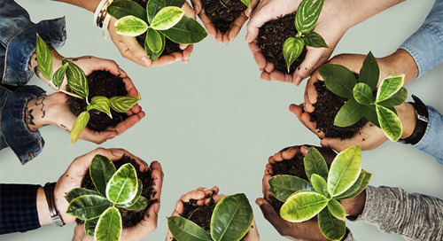 Getting Corporate Buy-in for an Environmental Management Information System (EMIS)