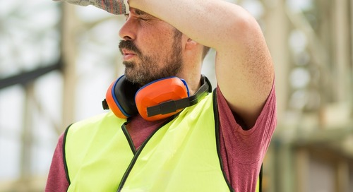 8 Frequently Asked Questions about Managing Heat Stress