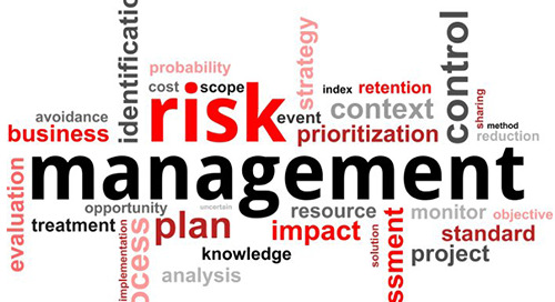 Risk Management Improves Outcomes in an Uncertain World