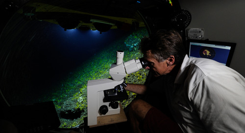 ZEISS Primovert: 20,000 Thousand Leagues Under the Sea
