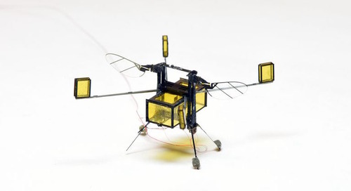 This minuscule bee-like robot can dive in and out of water