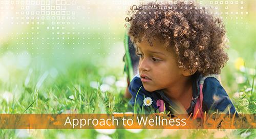 Approach to Wellness Programme