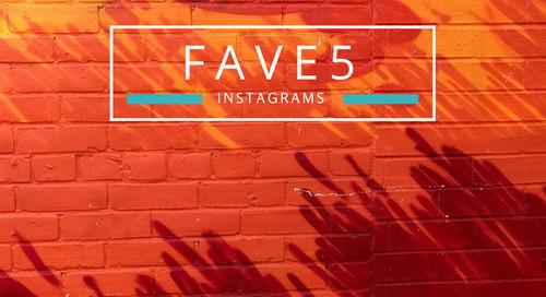 Our Favorite Instagrams of the Week 📈