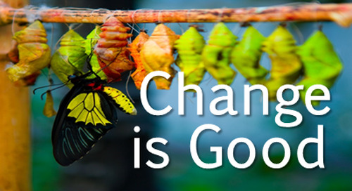 Change Is Good: Increasing your Effectiveness by Adapting Your Belbin Team Roles