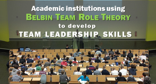 Belbin Team Role Theory in Higher Education