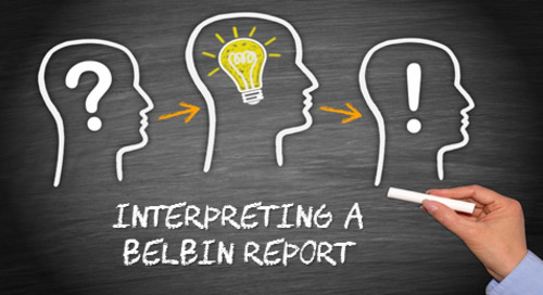 Interpreting Your Belbin