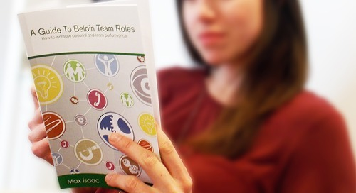 Book Preview: A Guide to Belbin Team Roles