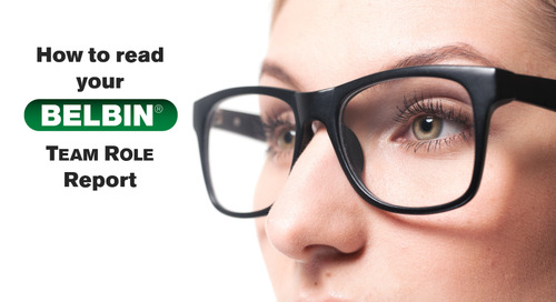 How to Read Your Belbin