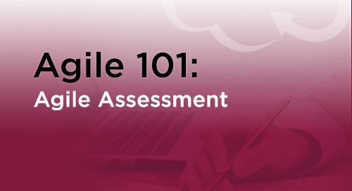 Agile Assessment: Test Your Team's Agility