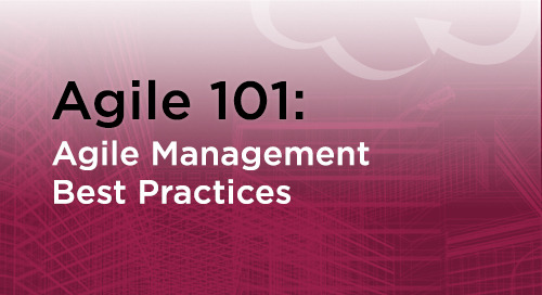 Agile Management Practices