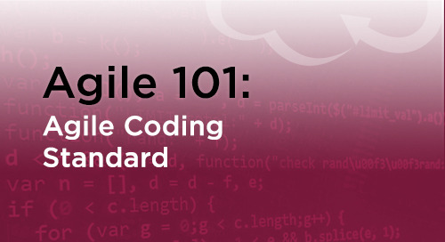 Agile Coding & Programming Standards