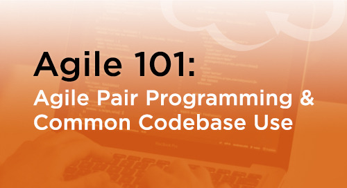 Agile Pair Programming & Common Codebase Use