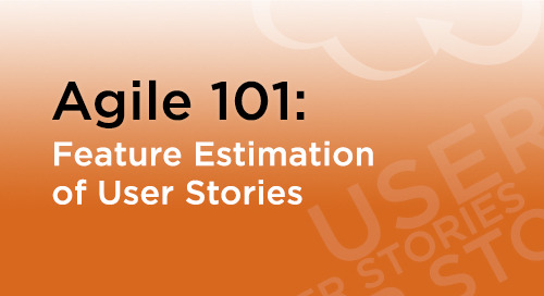 Feature Estimation of User Stories in Agile Development