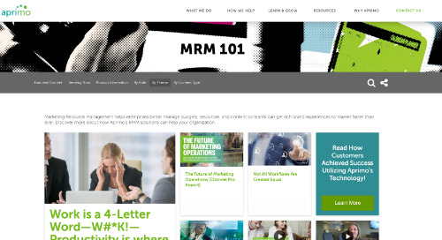 What is MRM?