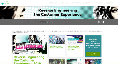Reverse Engineering the Customer Experience