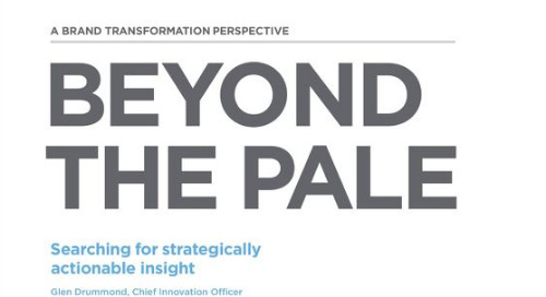 Beyond The Pale - Searching for Strategically Actionable Insight
