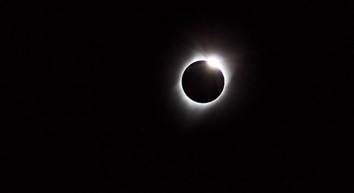A Breakdown of the Buzz Surrounding the Eclipse