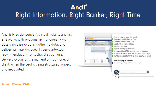 What Can Andi Do for Your Bank?