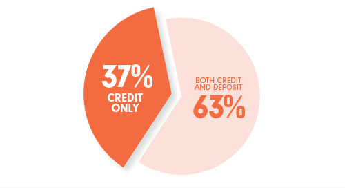 Data Analysis: Why Are There Still So Many Credit-Only Relationships?