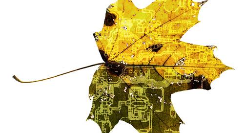 Wie biologisch abbaubare PCBs einen Beitrag zur Entsorgung von PCB-Abfällen leisten können