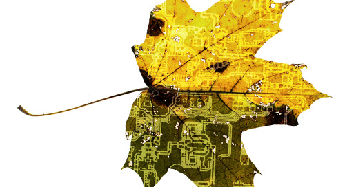 Biodegradable PCBs: Will They Really Help With PCB Waste Disposal?