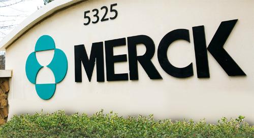Merck Case Study
