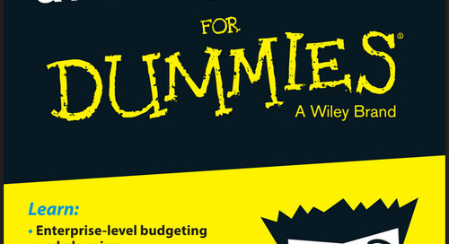 Enterprise Budgeting & Planning with Excel for Dummies [Part 1 of 3]