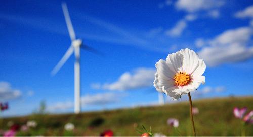 Understanding Renewable Energy Certificates in Europe