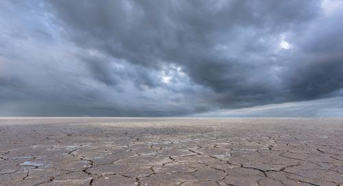 5 oportunidades para liderar em ações climáticas
