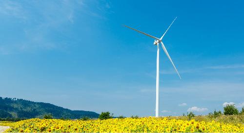 State of the European Renewable Energy Market (2019)