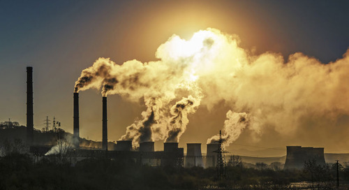 3 Ways to Prepare Your Business for Climate-Active Investors