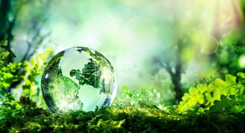 Preparing for a 'New Normal': Translating the EU's Green Deal into Action