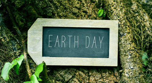 Celebrate Sustainability on Earth Day