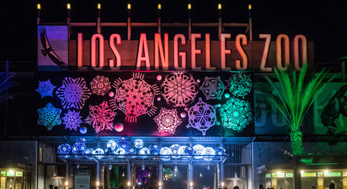 08/07/2018 LA Zoo Grabs Attention and Attendance with Holiday Lights Experience by Lisa O'Keefe
