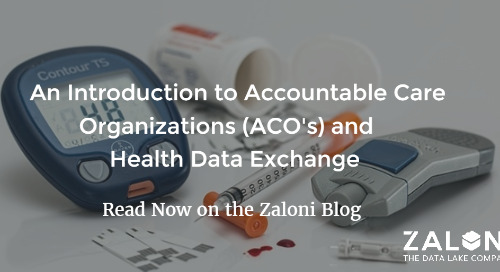 Harnessing Foundational Data Management Platforms to Accelerate Drug Development