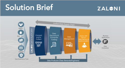 Active Data Hub Solution Brief