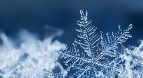 Zaloni + Snowflake - Extensibility Wins for Cloud DataOps