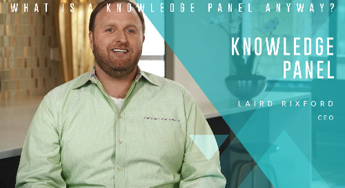 What is a Knowledge Panel Anyway
