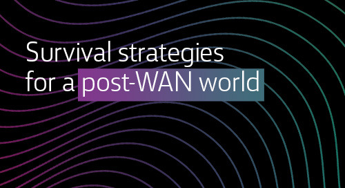 [Article] Survival strategies for a post-WAN world