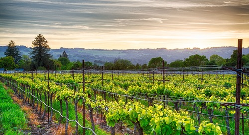 Sovos GCS: ShipCompliant Wine Summit | May 31| Napa, CA